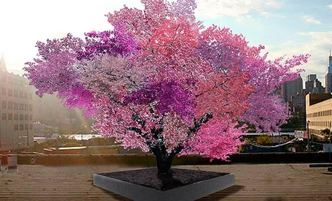 tree-of-40-fruits-sam-van-aken-1a.jpg.662x0_q70_crop-scale